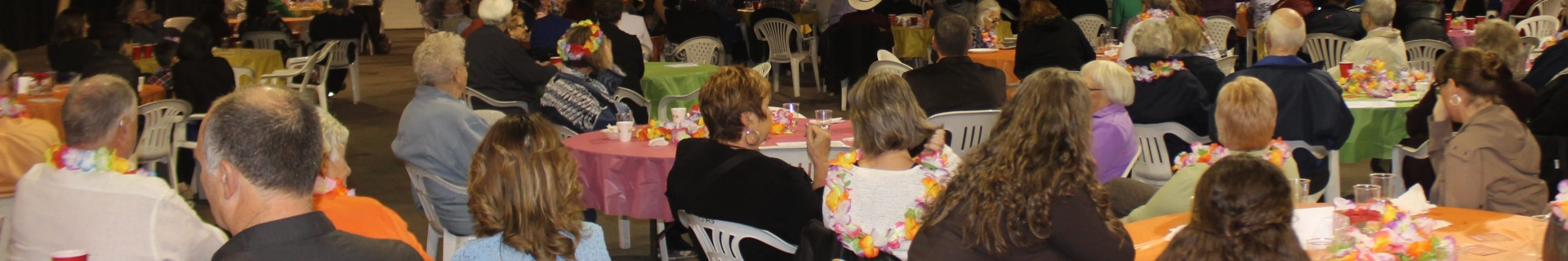 Group of older adults sitting with their backs to the camera