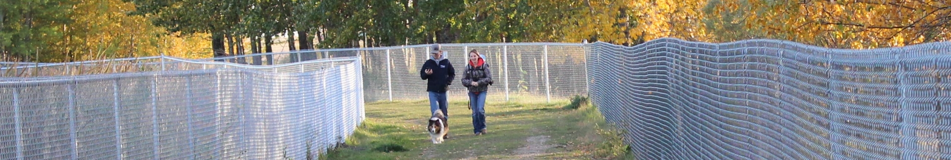 Couple walking with small dog in a fenced off dog-run